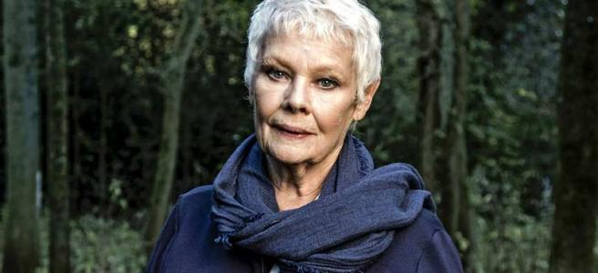 judi dench trees my passion for trees the secret life of trees