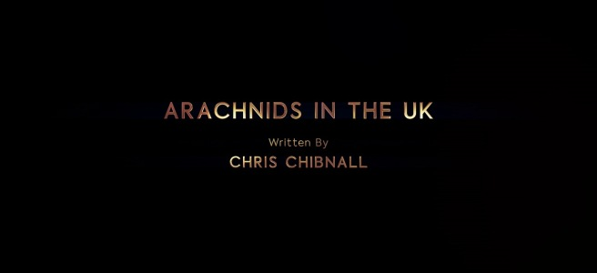 doctor who arachnids in the uk review spiders jodie whittaker bradley walsh tosin cole mandip gill chris noth chris chibnall sallie aprahamian
